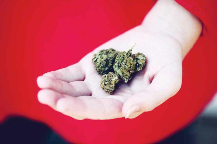 cannabis gifts
