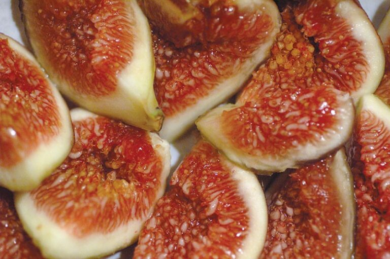 Want Some Figs?