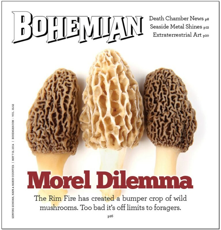 Morel  of the  Story