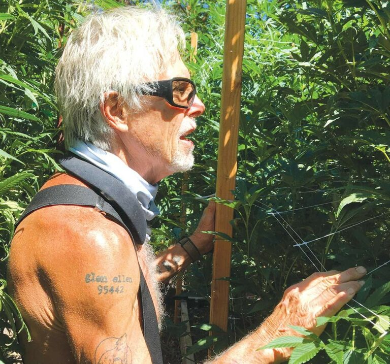 A Farm and a Dispensary Bloom in Sonoma