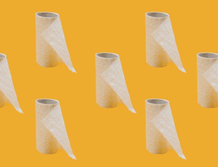 Toilet Paper: A Poem