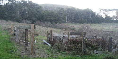 Carrington Ranch Sonoma County Parks
