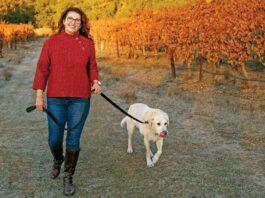Wine Dogs