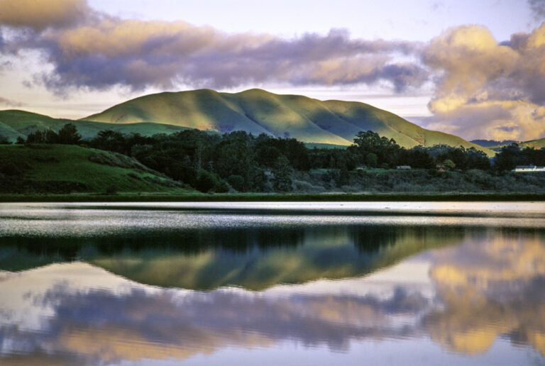 The Astonishing Beauty of Point Marin … a landscape show by Kathleen Goodwin and Richard Blair